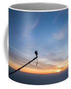 Gopro Action Sport Camera On A Boom Coffee Mug