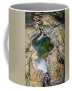 Gorge Trail In Autumn Watkins Glen Coffee Mug