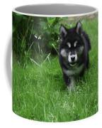 Gorgeous Alusky Puppy Dog Creeping Through Grass Coffee Mug