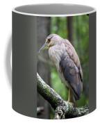 Gorgeous Bird Coffee Mug