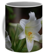 Gorgeous Blooming White Lily With Yellow Pollen On It's Stamen Coffee Mug