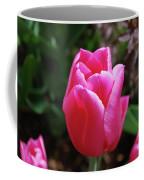 Gorgeous Dark Pink Tulip Blooming In A Garden Coffee Mug
