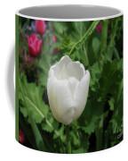 Gorgeous Flowering White Tulip In A Spring Garden Coffee Mug