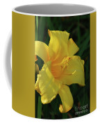 Gorgeous Flowering Yellow Daylily Blooming In A Garden Coffee Mug