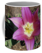 Gorgeous Light Purple Tulip With Yellow Stamen Coffee Mug