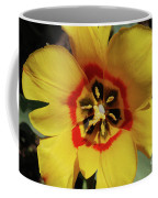 Gorgeous Look At The Center Of A Yellow Tulip Coffee Mug