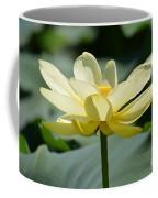 Gorgeous Lotus Flower Coffee Mug