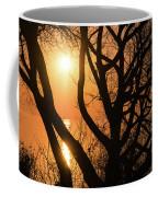 Gorgeous Morning Through The Tree Screen Coffee Mug