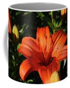 Gorgeous Pretty Orange Lily Flower Blooming In A Garden Coffee Mug