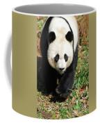 Gorgeous Sweet Giant Panda Bear Ambling Along Coffee Mug