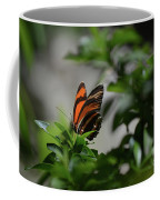 Gorgeous View Of An Oak Tiger Butterfly In The Spring Coffee Mug