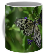 Gorgeous White Tree Nymph Butterfly With It's Wings Spread Coffee Mug
