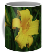 Gorgeous Yellow Daylily In A Garden Blooming Coffee Mug