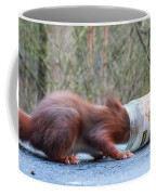 Gorging Squirrel Coffee Mug