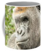 Gorilla - Como Zoo, St. Paul, Minnesota Coffee Mug