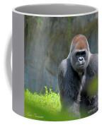 Gorilla Stare Coffee Mug