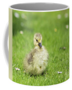 Gosling Coffee Mug