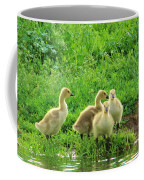 Gosling Shore Side Coffee Mug