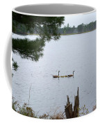 Goslings And Geese Coffee Mug