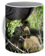 Gosling's In The Shade Coffee Mug