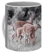 Humor Got Some Doe And Two Bucks Coffee Mug