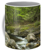 Grafton Notch Maine Coffee Mug