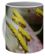 Grains Of Pollen Coffee Mug