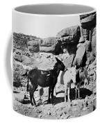 Grand Canyon: Donkeys Coffee Mug