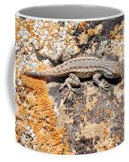 Grand Canyon Lizard Coffee Mug