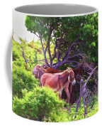 Grand Turk Donkeys In The Shade Coffee Mug