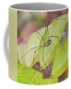 Grandaddy Long Legs Coffee Mug