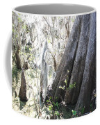 Grandfather Cypress Coffee Mug