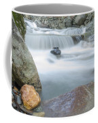 Granite Pool Coffee Mug