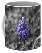 Grape Hyacinth Coffee Mug