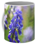 Grape Hyacinth II Coffee Mug