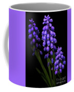 Grape Hyacinths Coffee Mug