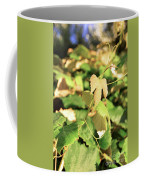 Grape Vine 3 Coffee Mug