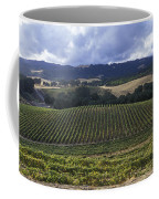 Grape Vines On Opolo Vineyards Coffee Mug