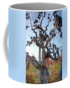 Grapes Aloft Coffee Mug