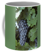 Grapes On The Vine Coffee Mug by Kenneth Garrett