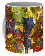 Grapes On Vine In Vineyards Coffee Mug by Garry Gay