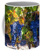 Grapes Ready For Harvest Coffee Mug