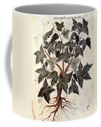 Grapevine, 1229 Coffee Mug