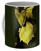Grapevine In The Back Lighting Coffee Mug by Michal Boubin