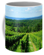 Grapevines On Old Mission Peninsula - Traverse City Michigan Coffee Mug