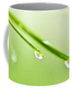 Grass Blades With Water Drops Coffee Mug