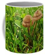Grass Mushroom Pair           Tubaria Fungii           May           Indiana Coffee Mug