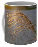 Grassflowers In The Setting Sun Coffee Mug