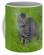 Gray Cat In Vivid Green Grass Coffee Mug