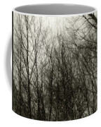 Gray Dawn Coffee Mug